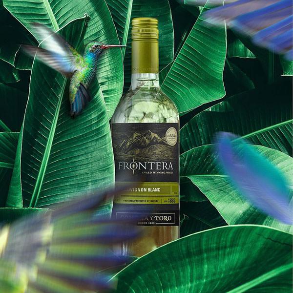 Frontera Wine Sauvignon Blanc